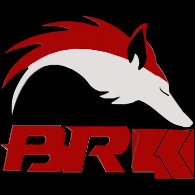 BRK E-Sports logo