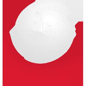 Eanix team logo