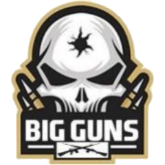 Big Guns team logo