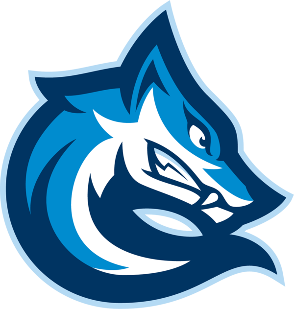 Control eSports logo