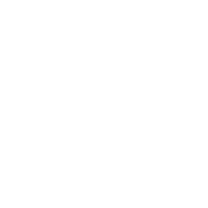 Team Secret logo