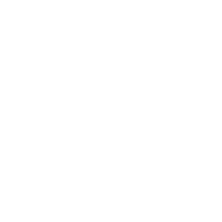 TSM team logo