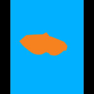 Rogue team logo