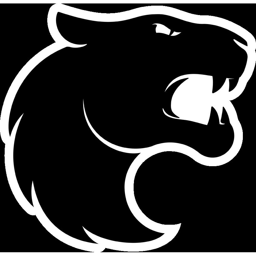 FURIA Esports team logo