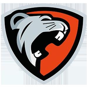 Mouseplayz team logo