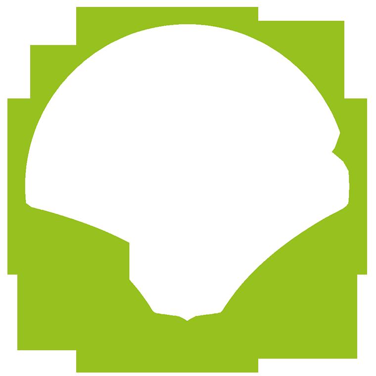 Team Singularity logo