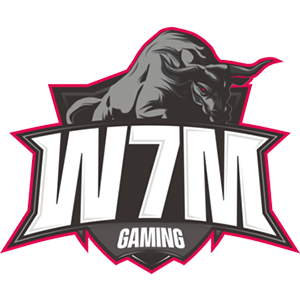 W7M Gaming team logo