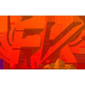 Team FawKes logo