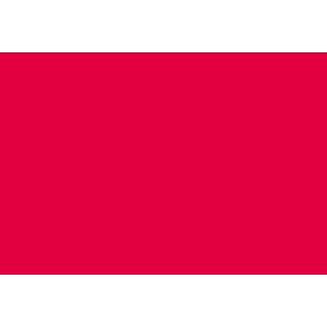 Talon Esports logo