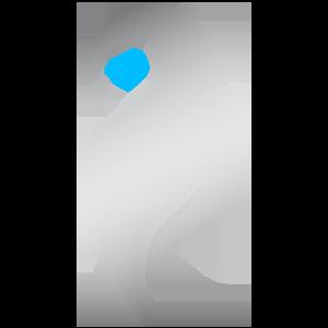 Mirage team logo