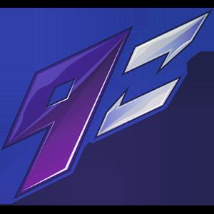 9z Team team logo