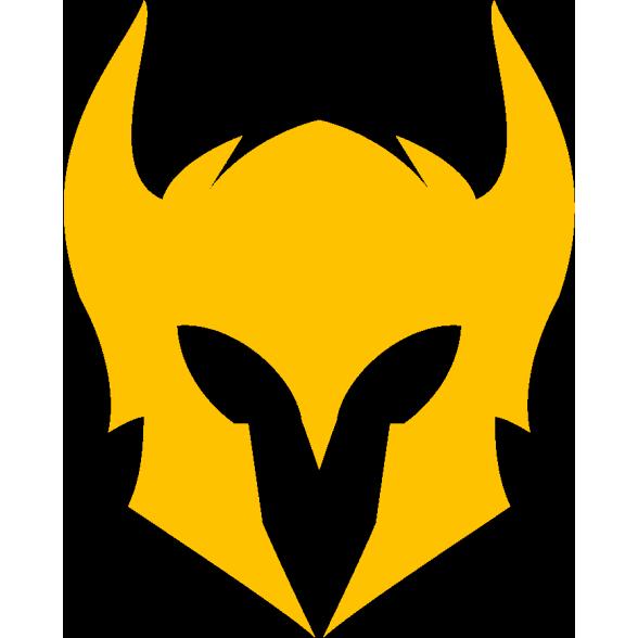 Valkyrie team logo