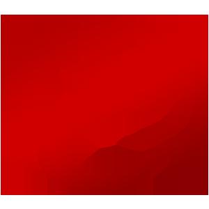Team SiNister logo