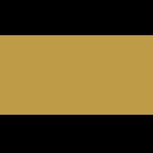 Royal Republic team logo