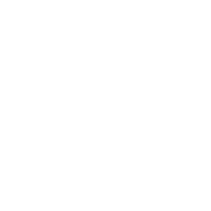 LFO team logo