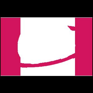 GAMMA GAMING logo
