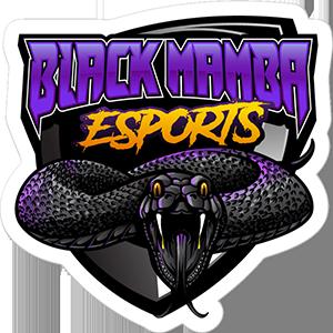 Black Mamba Esports