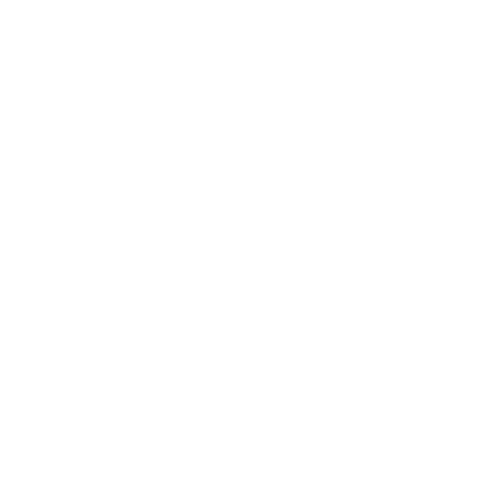 4 Elements logo