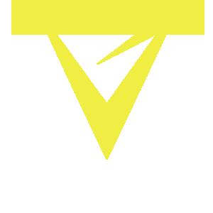 Vertical Gaming logo