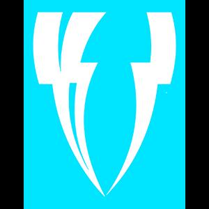 VINCIT Gaming logo