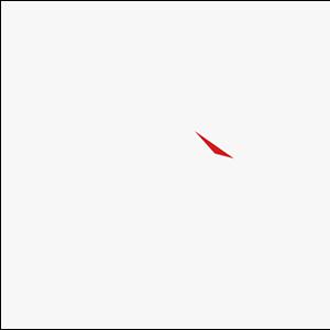 Wichita Wolves