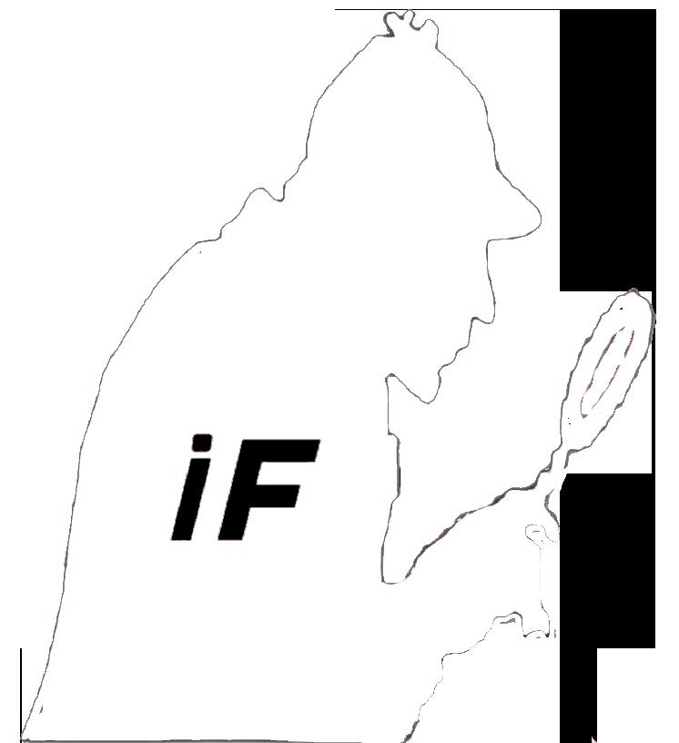 Investigation File logo