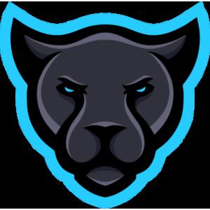 Ferocity team logo